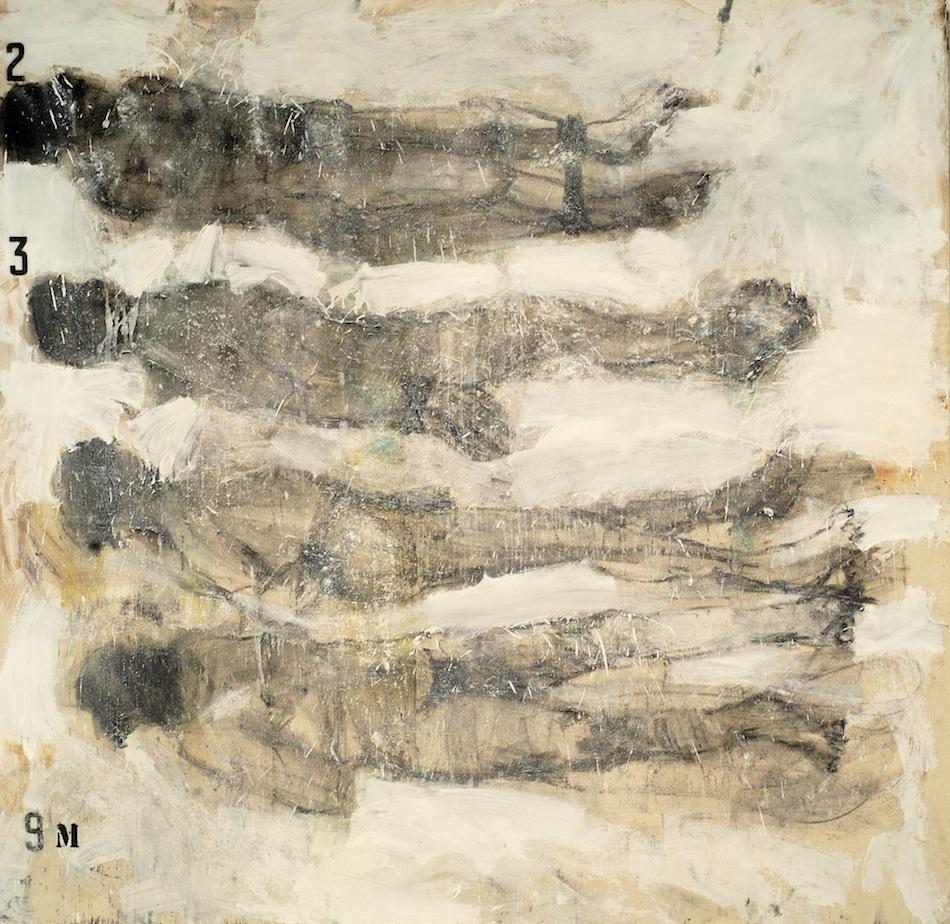 9 metros de cal (1995)